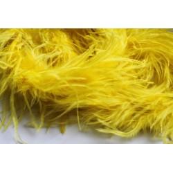 Pióra strusie BOA żółte