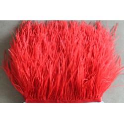 Pióra strusie frędzle czerwone