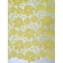 Gipiura żółta 09