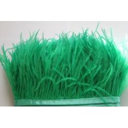 Pióra strusie frędzle zielone